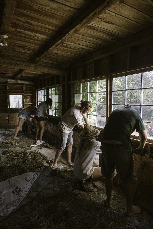 natural building workshop-14.jpg