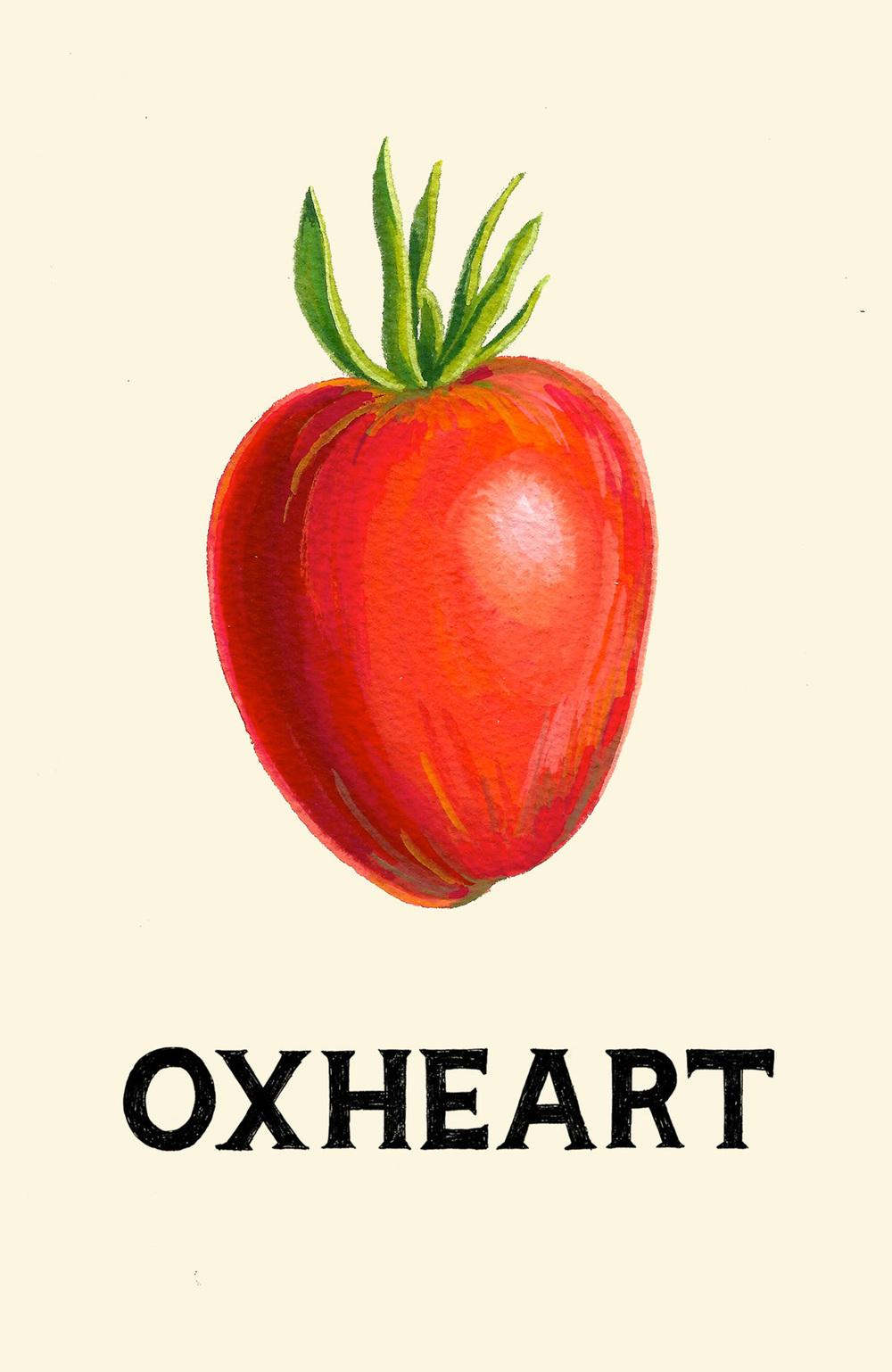 oxheartpc.jpg