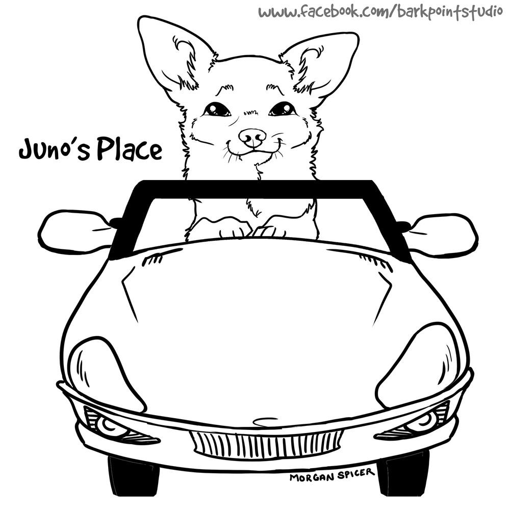 JunosPlaceGraphic1.jpg