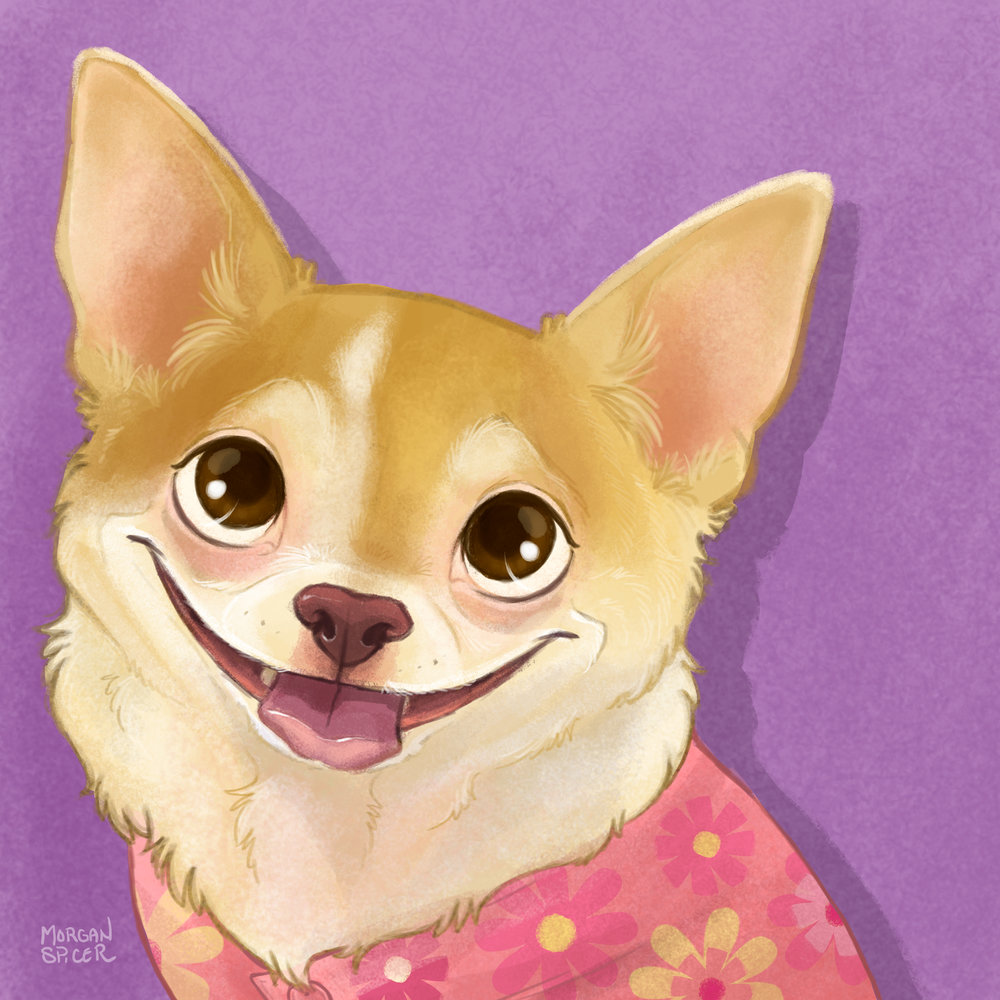 NancyAMadison_IllustratedPortrait_Chihuahua.jpg