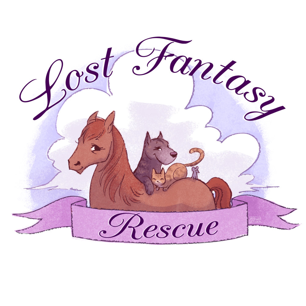 LostFantasyRescue_Logo_Donation.jpg