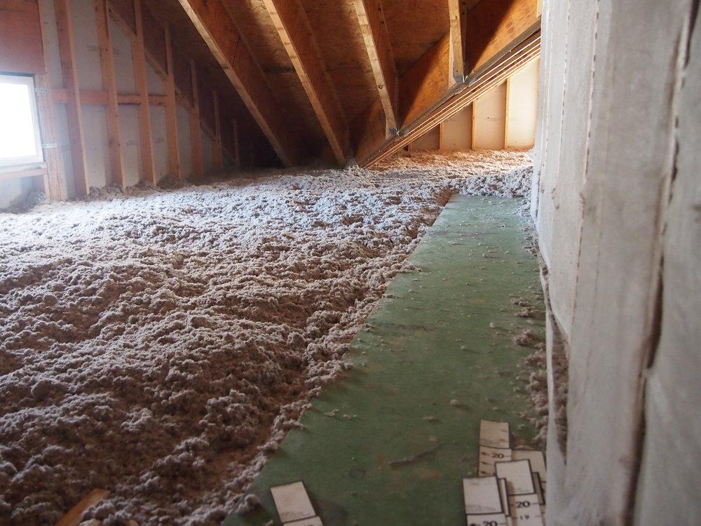 Taft two feet of cellulose attic.JPG