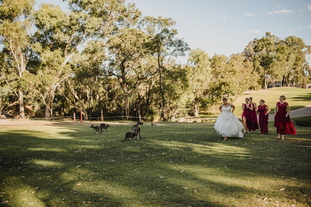 australia-destination-pavilion-wedding-134.jpg