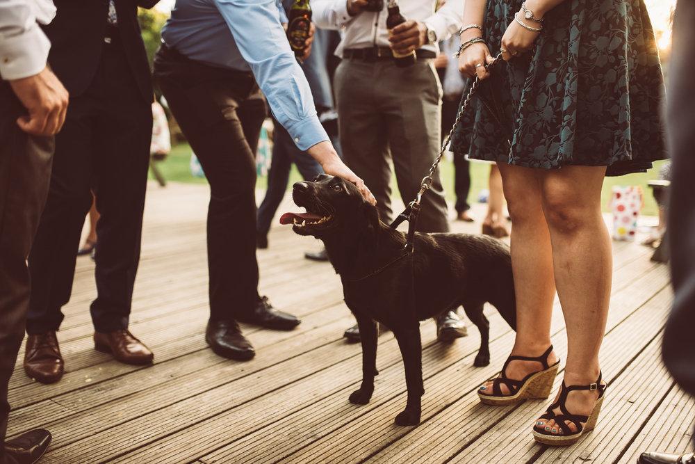weddings-in-the-wood-rustic-garden-party-wedding-175.jpg