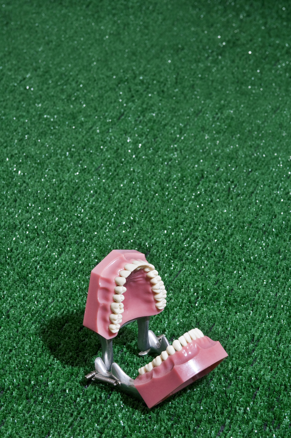 teeth5sm.jpg