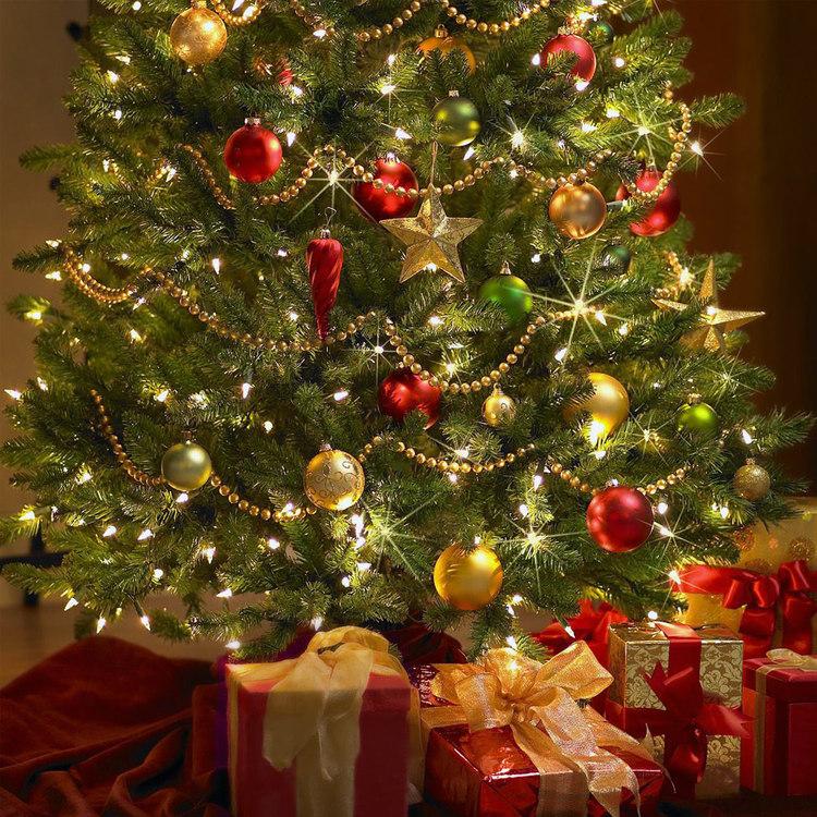 christmas-tree-decoration-89ztgxbc.jpg