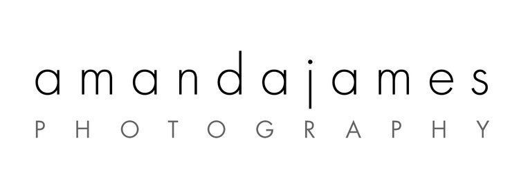 amanda james photography - charlotte nc family photographer newborn babies maternity kids