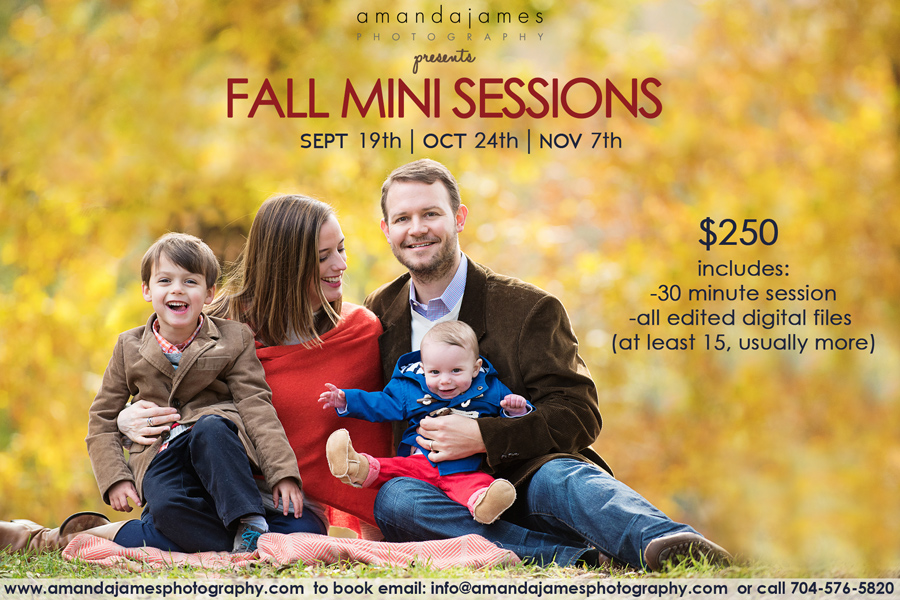 Charlotte fall mini-sessions
