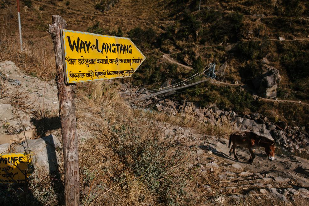 Nepal-Week8-5DMkII-2.jpg