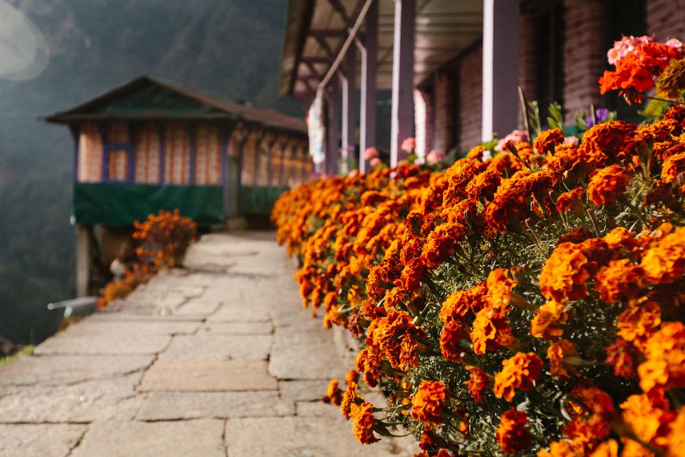 Nepal-Week6-5DMkII-57.jpg