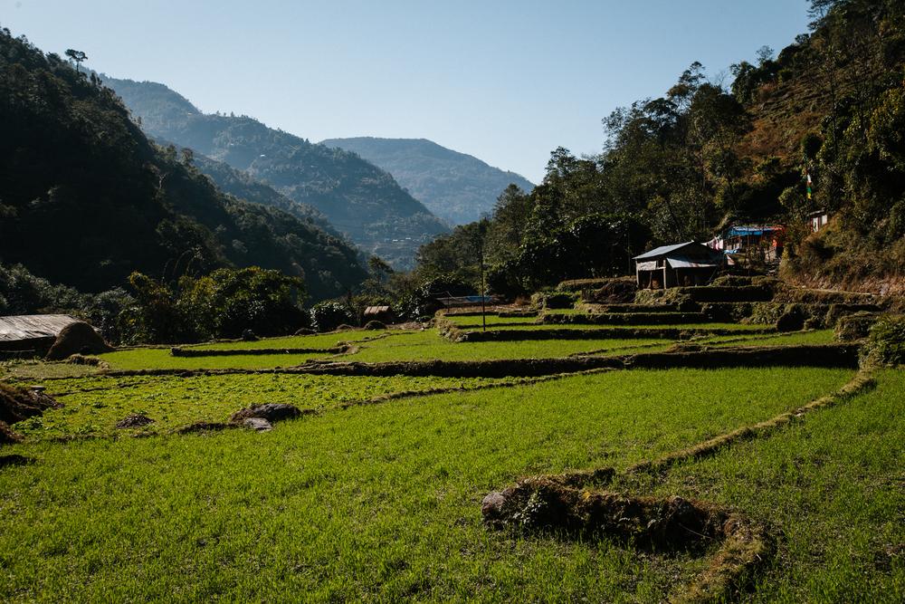 Nepal-Week6-5DMkII-62.jpg