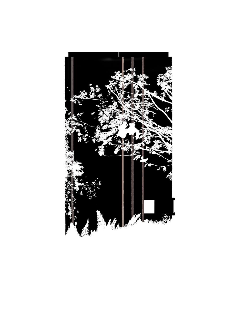 bild3 (1)SDFS copy dftg.jpg
