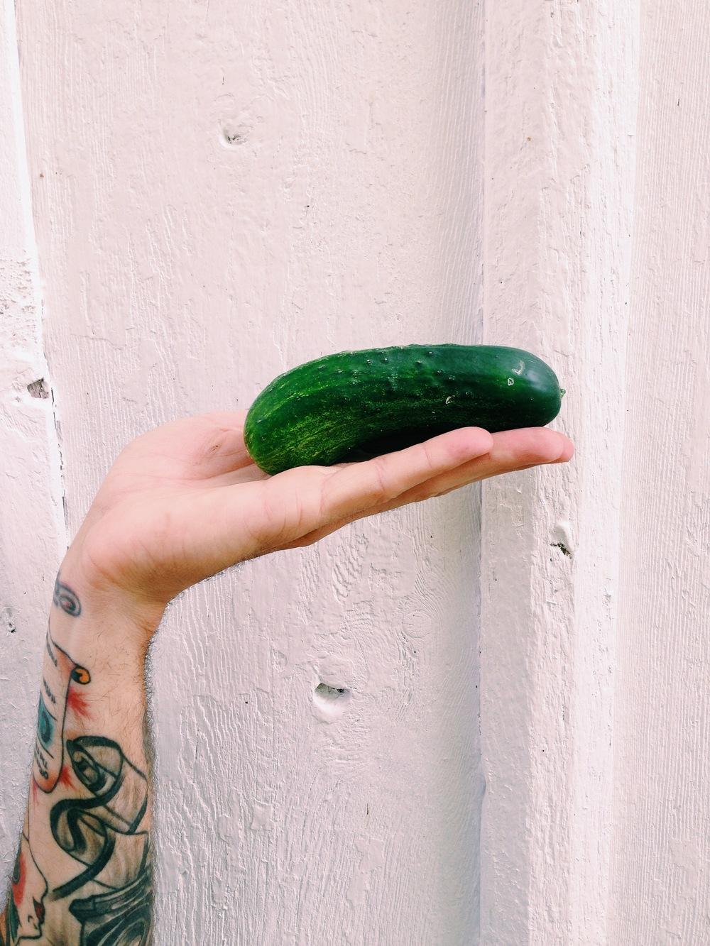 Kirby Cucumbers