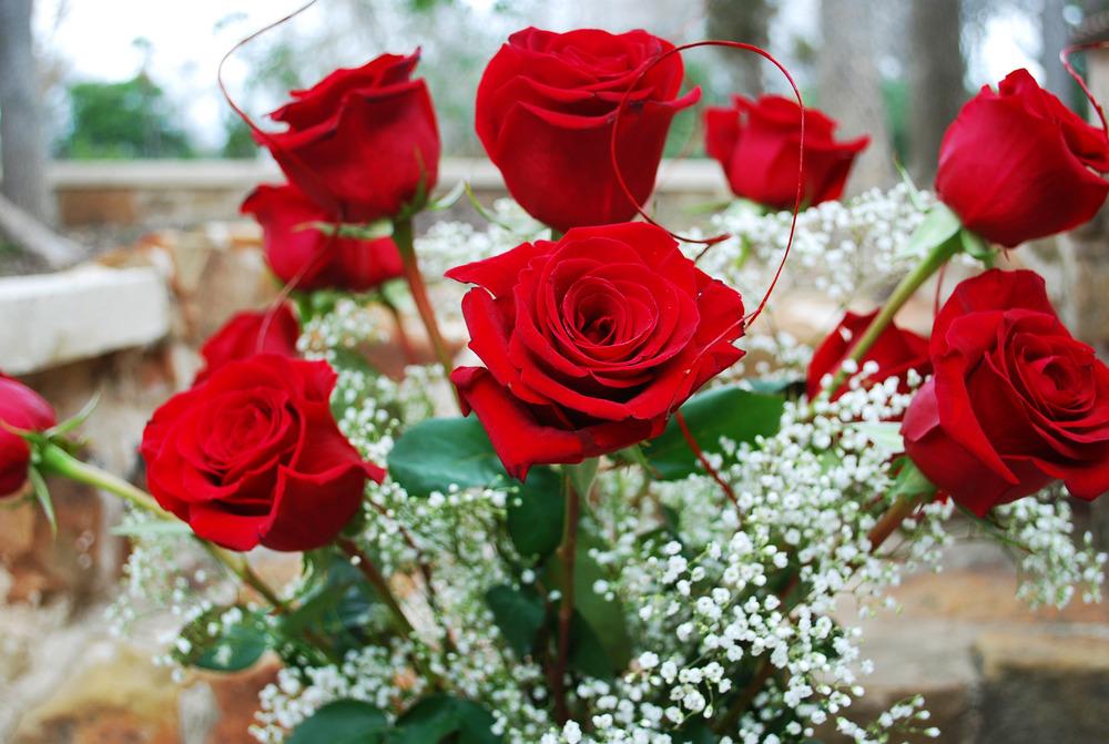 Red Roses 6.jpg
