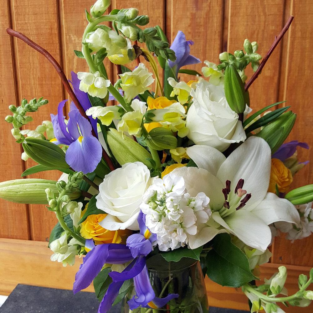iris white rise.jpg