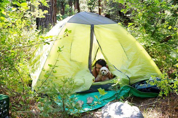 yard-camping