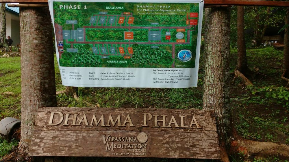 Dhamma Phala 2.jpg
