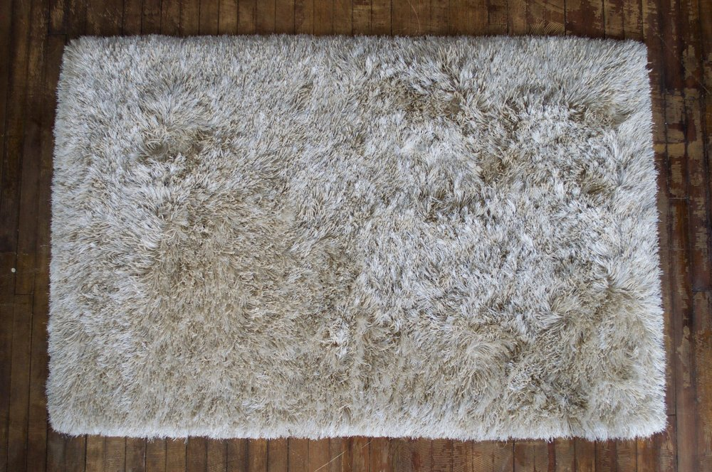 Shaggy Champagne Rug (4 x 6) or (5 x 8) $48