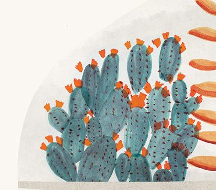 cactus-closeup.jpg
