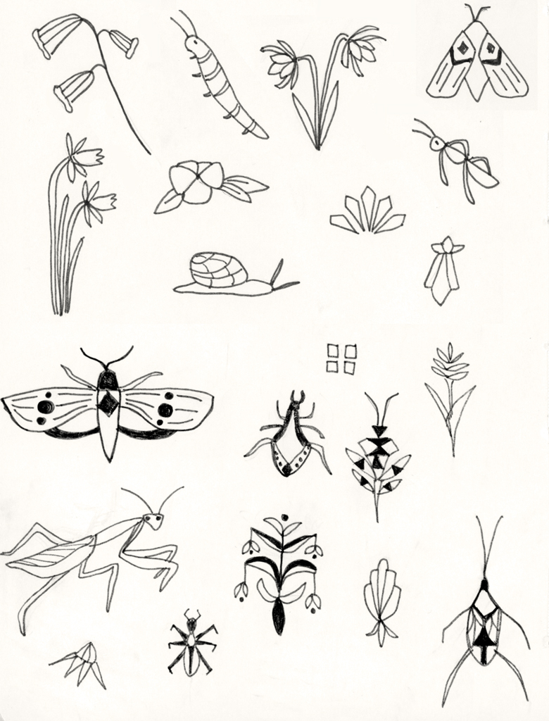 bugssketches.jpg
