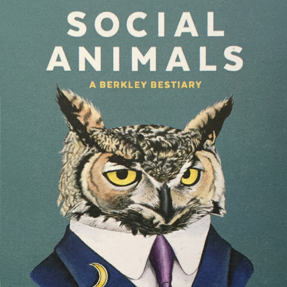 So glad to discover these wonderful animal portraits by Ryan and Lucy Berkley. I've been contemplating turning my animal personalities into a book, this makes it seem possible :).