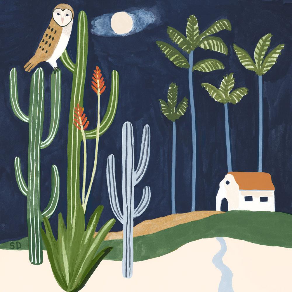 desertdwellers-owl-sophiequi.jpg