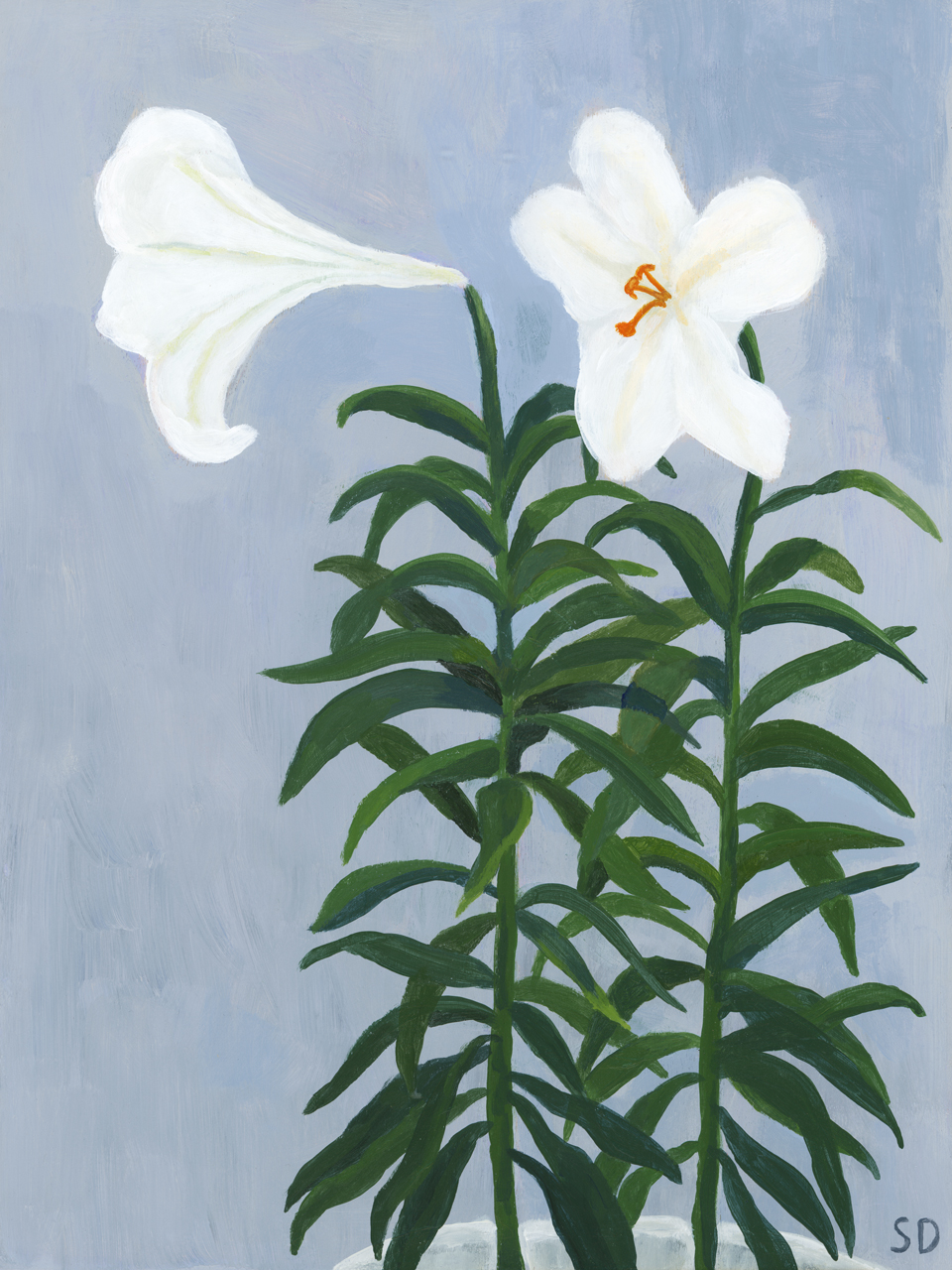 lillies-sophiequi.jpg