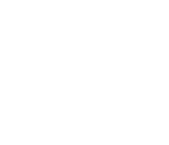 Wellington Women's Health Collective