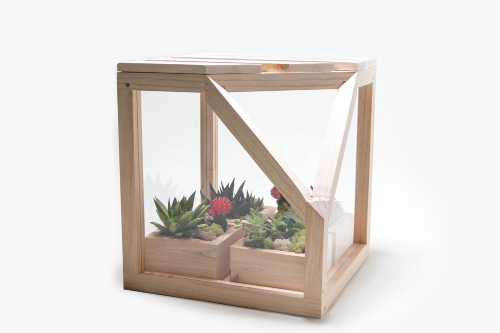 Terrarium Cube -