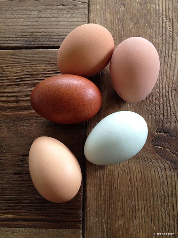 onions_eggs_2b.jpg