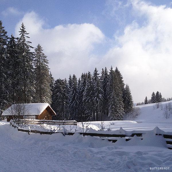 winter_2016.jpg