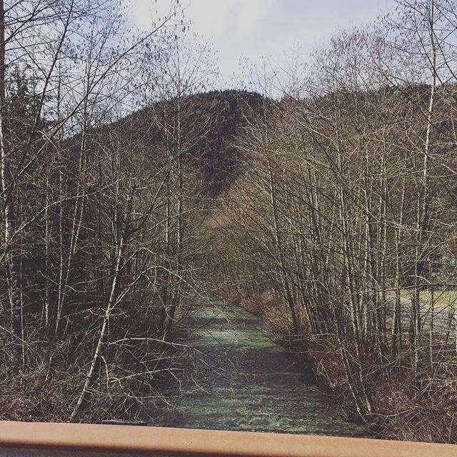 Spotting small creeks everywhere I go... I'd fish it. #knowherethisis #idfishit