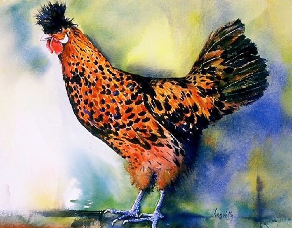 "© 2014 Ann Kelly, ""Golden Spangled Hen"""