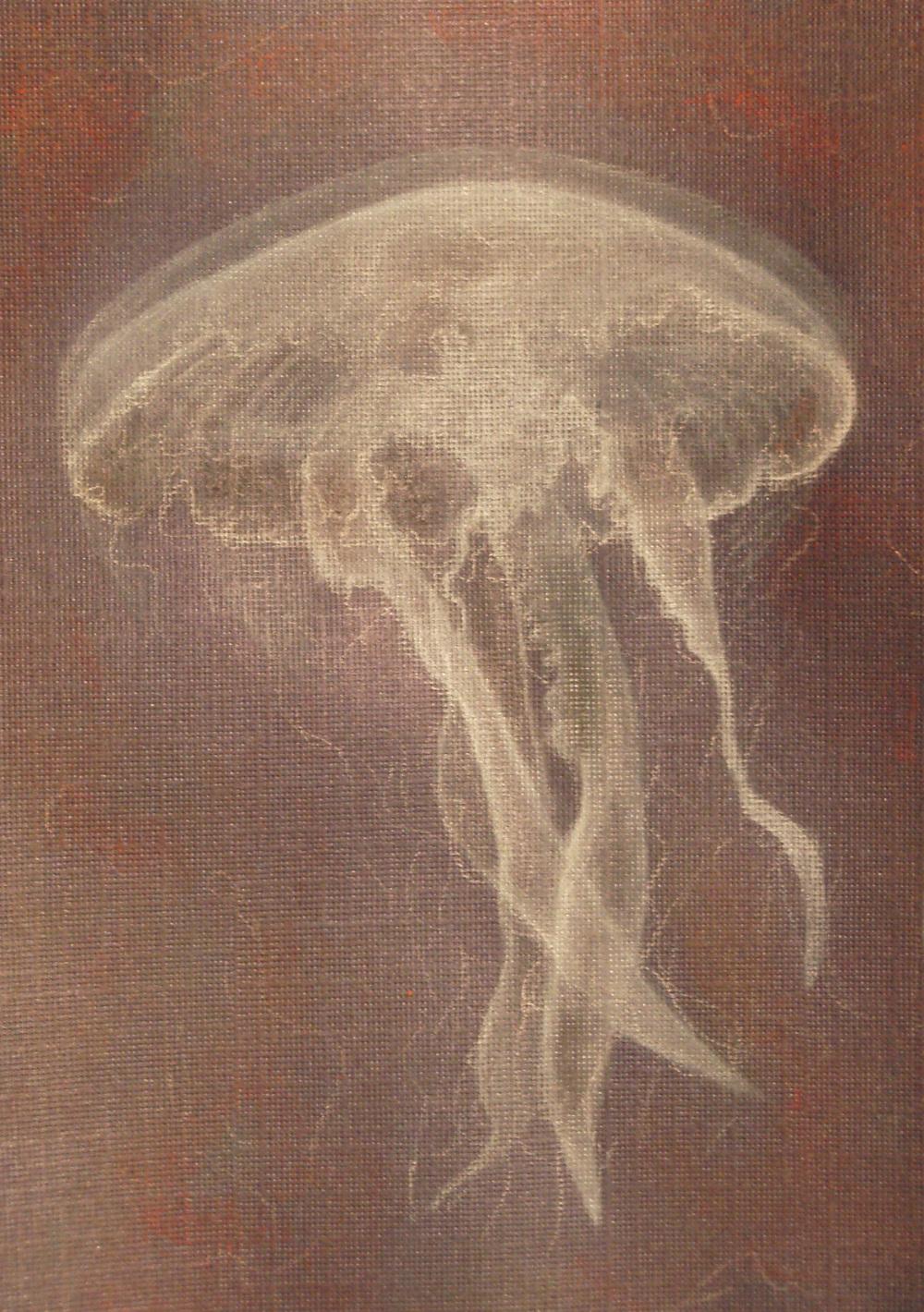 rowe_jellyfish.JPG