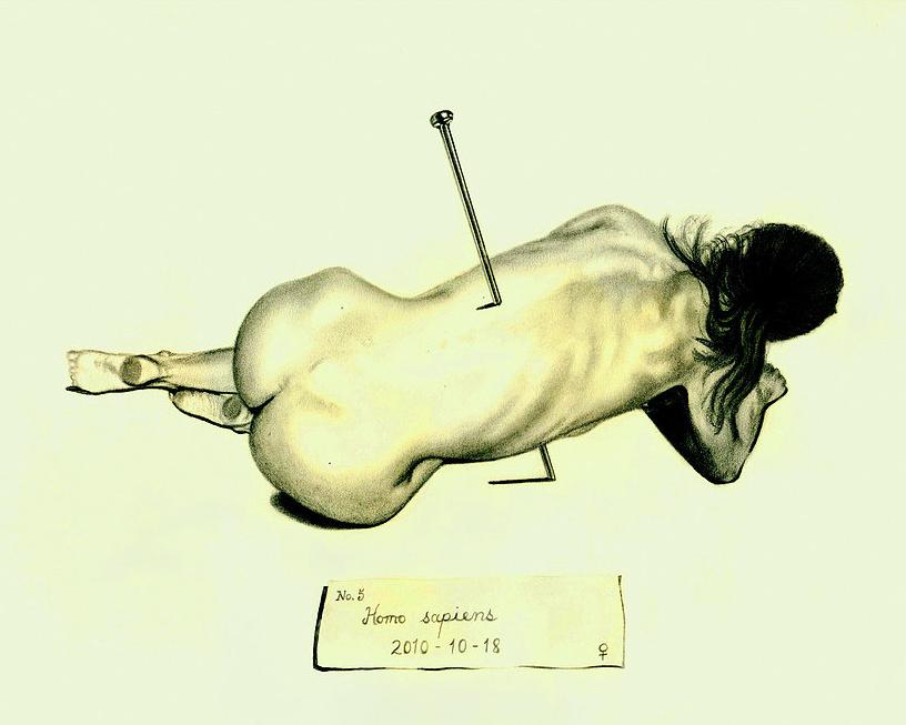 rowe_specimen.jpg