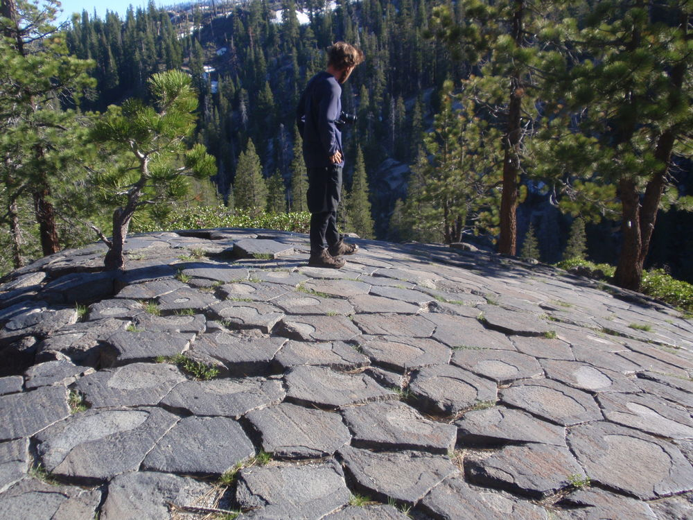Picker on top of Devil's Postpile. The streaking lines in the tops of the columns were scraped by a passing glacier, an example of glacial striation.
