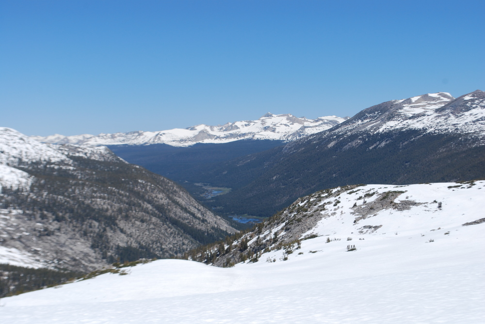 Lyell Canyon offers a glimpse of snow-free green meadows ahead.