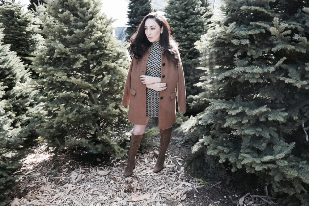 Outfit Details  Trench: H&M USA  Dress: ZARA    Boots: ZARA