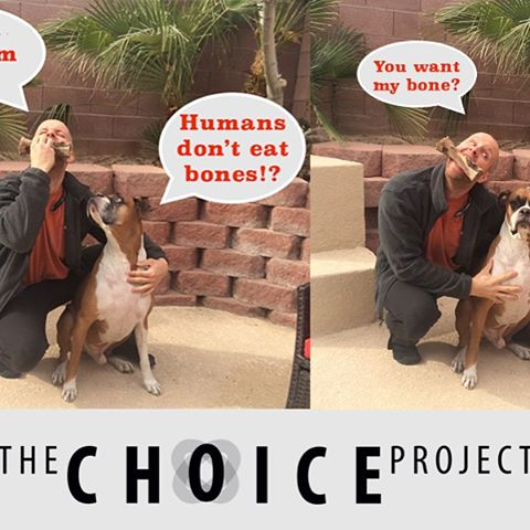 Do you talk with your dog? #MyChoiceProject #Choice #DogFood #Diet #health #Gatorade #Keto #Movie #Trailer #Watch    https://www.indiegogo.com/projects/the-choice-project-documentary#/ #Health #Live #Love #Laugh #success #healthy #fun #ketodiet