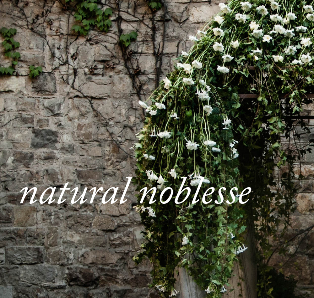 Natural-Noblesse-Thumbnail.jpg