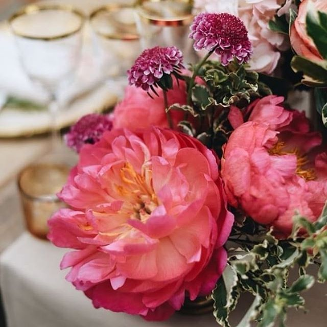 Peach details at Il Borro, Ferragamo's country resort. Repost @lisapoggi Wedding planner @exclusiveitalyweddings PH @lisapoggi Venue @ilborro Floral designer @tuscanyflowers #tuscanywedding #luxurywedding #weddingflowers #weddingflowers #weddingdetails