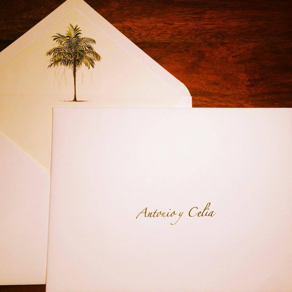 palmera zapfino.jpg