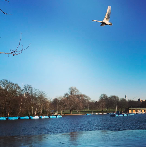 The Serpentine Lido, Hyde Park