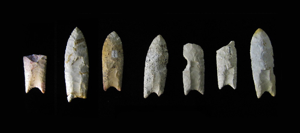 Clovis points  from the Rummells-Maske Site.   Image Source .