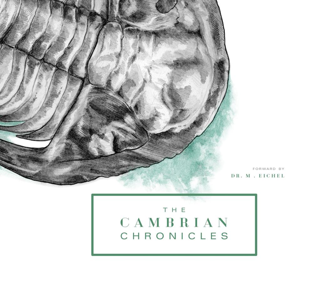 cambrian.jpg