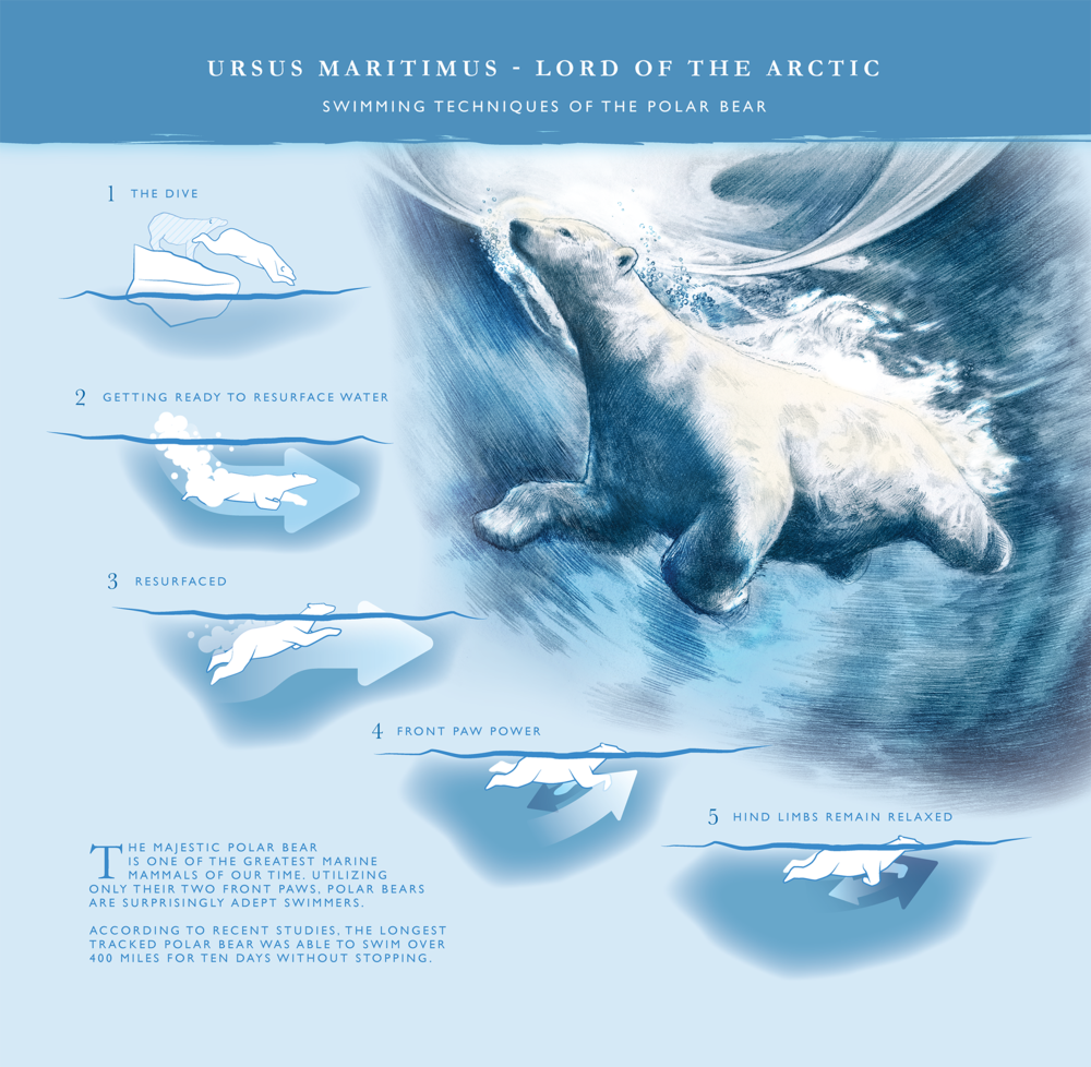 lord of the arctic