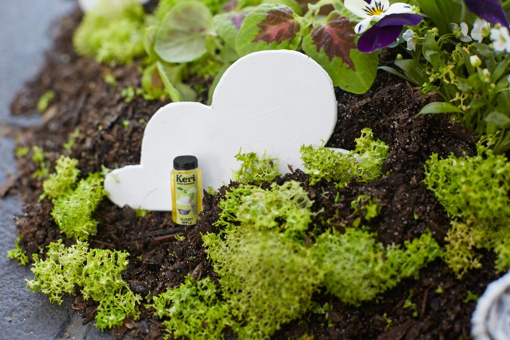 The_Pothole_Gardener_02 17.jpg