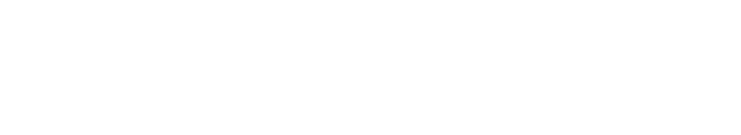 Bertoni Defense Systems