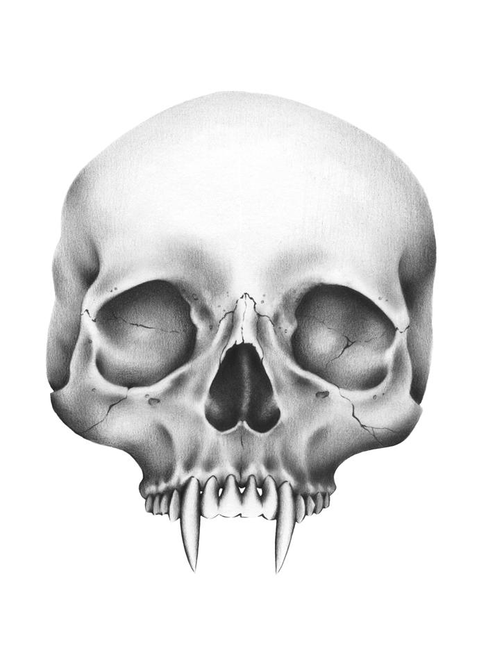 Fanged Skull