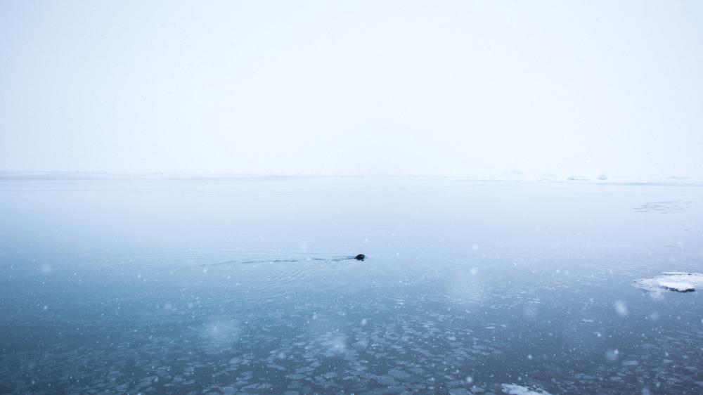 iceland-1-6.jpg